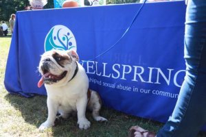Annual Pooch Parade in Virtual Format Oct. 16-18