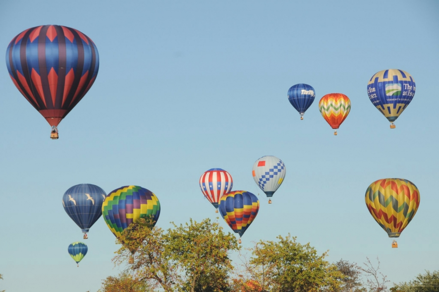 Annual Saratoga Balloon and BBQ Festival